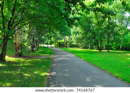 green alley in summer park at morning - stock photo