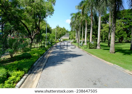Green alley,path in the park for relax - stock photo