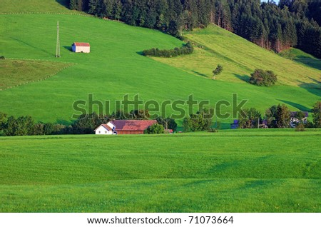 Green alpine hillside, Switzerland, Europe. - stock photo