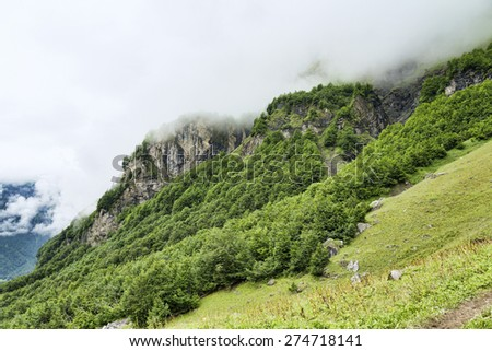 Green alpine meadow among rocky mountains and forest - stock photo