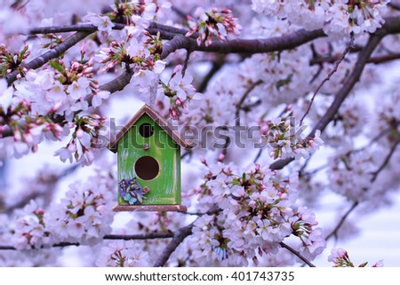 Green and brown birdhouse hanging from spring flowering tree branch; white blossoms blurred in background - stock photo
