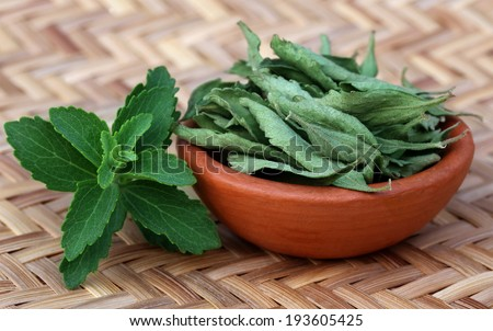 Green and dired Stevia leaves over an textured surface - stock photo
