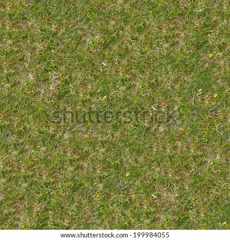 Green and Dry Grass on the Ground. Seamless Tileable Texture. - stock photo