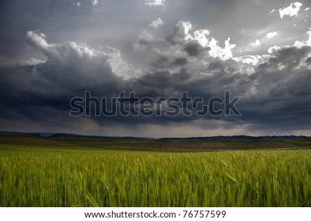 Green and gray - stock photo