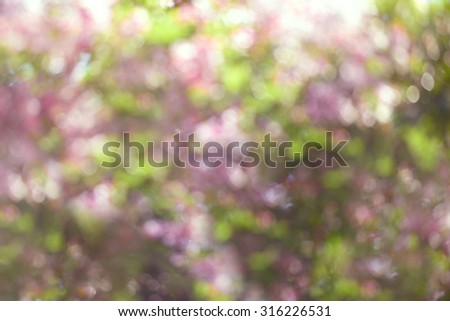 green and pink bokeh abstract defocused background  - stock photo