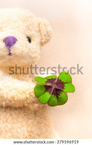 Green and red colored lucky clover leaf at the hand of a teddy bear in background (copy space)/Teddy Bear with Clover Present - stock photo