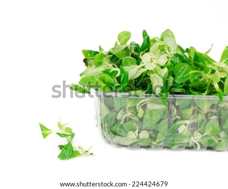 Green and red leaf of lettuce in box. Isolated on a white background.