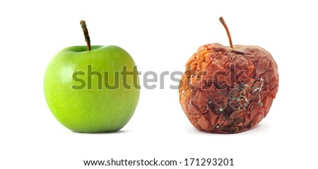 Green and rotten. Isolated object. Element of design. - stock photo
