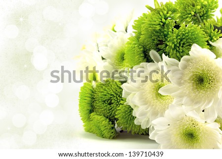 Green and white chrysanthemum bouquet with diffused background - stock photo