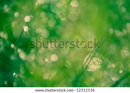 Green and yellow blurred spots and circles - stock photo