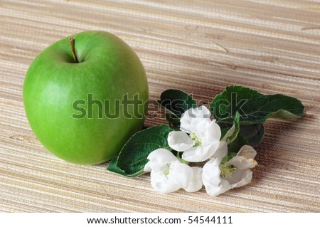 green apple and blossoming branch - stock photo