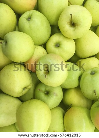 green apple harvest. many apples. fresh apples. apples for shop