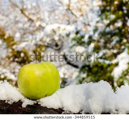 Green apple in snow - stock photo