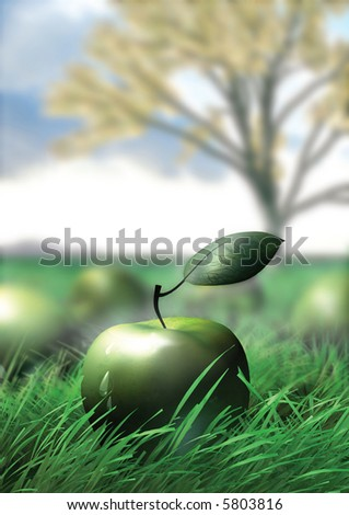Green apple in the grass - stock photo