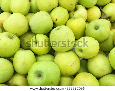 Green apples. Yellow apples. Apple harvest. Many apples. Autumn apples.