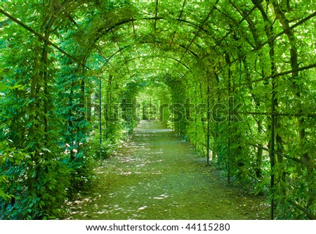 Green archway in a garden - stock photo