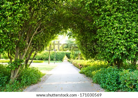 Green archway in the park at summer. - stock photo