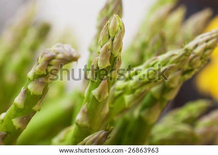 green asparagus with blur background - stock photo