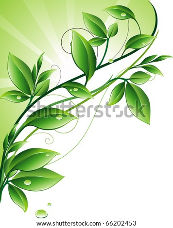 Green background (JPEG) - stock photo