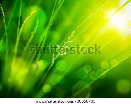green background  with color bokeh - stock photo
