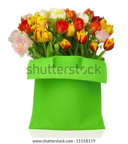 green bag with beautiful tulip bouquet . isolated on white background - stock photo