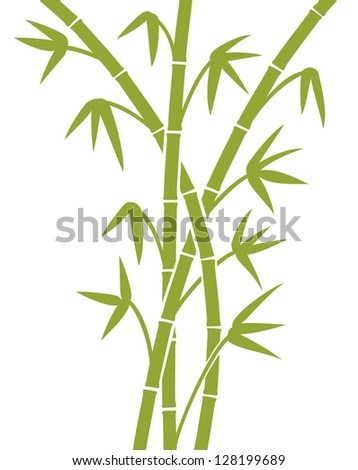 green bamboo stems (bamboo vector illustration, bamboo leaves, bamboo branches, silhouette of bamboo trees) - stock photo