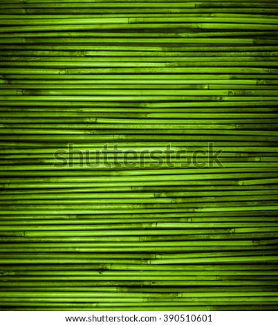 Green bamboo texture with natural patterns, close up - stock photo