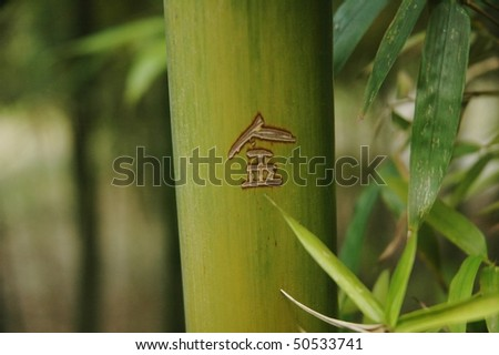 green bamboo with the chinese sign - stock photo