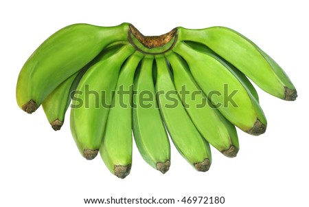 Green banana known as Plantain - stock photo