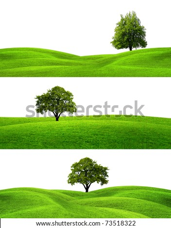 Green Banners - stock photo