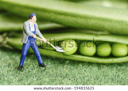 Green bean farmer miniature toy figure - stock photo