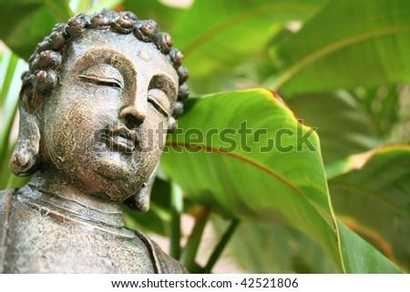 green bhudda - stock photo