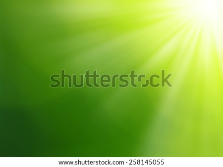 Green blurred background and sunlight - stock photo