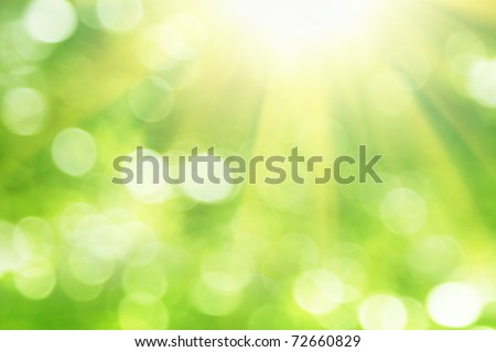 Green blurred background and sunlight. - stock photo