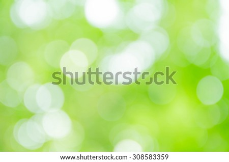 Green bokeh abstract background from nature