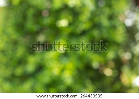Green Bokeh And Blurred Background - stock photo
