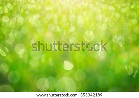 Green bokeh background. Element of design. - stock photo