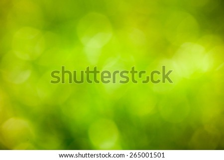 Green bokeh background. Element of design. Abstract eco green blurred background. - stock photo