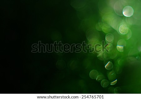 Green bokeh background from tree abstract background - stock photo