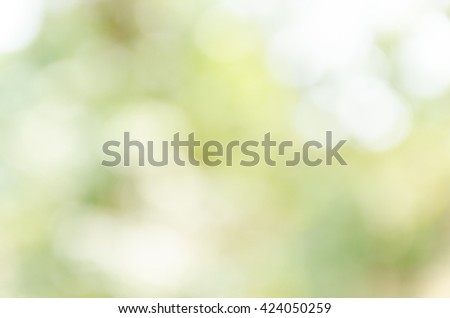 Green bokeh out of focus background from nature forest - stock photo