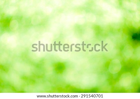 Green bokeh soft background - stock photo