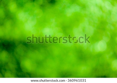 Green bokeh soft background - stock photo
