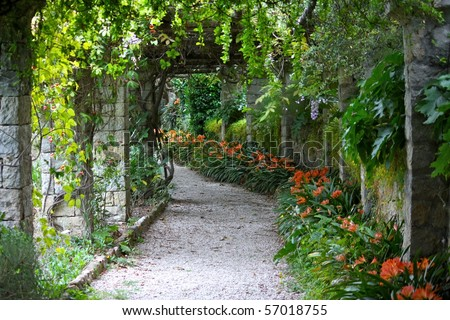 Green bower in Villa Hanbury Botanic Gardens, near Ventimiglia, Italian Riviera - stock photo