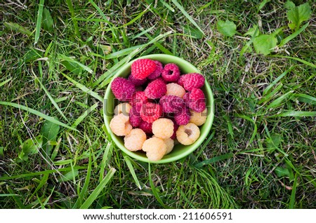 Green bowl with red and yellow raspberries on a grass - stock photo