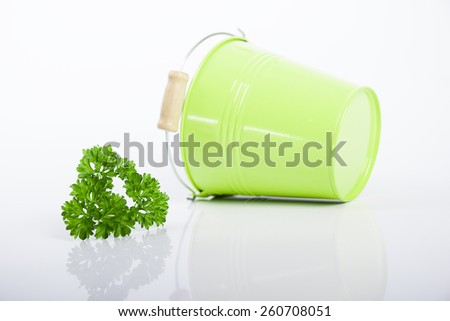 Green bucket with parsley and dill isolated on white. - stock photo
