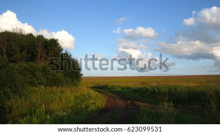 Green bushes, field road and blue sky with clouds