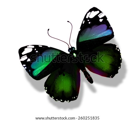 Green butterfly flying, isolated on white - stock photo