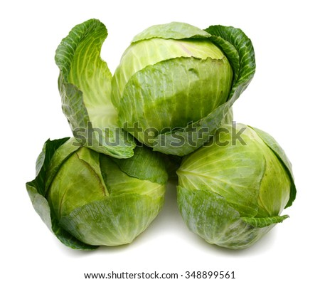 green cabbage heads on white background