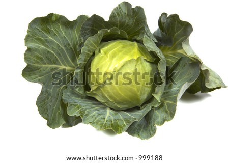 green cabbage on white - stock photo