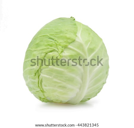 Green cabbage on white background. - stock photo
